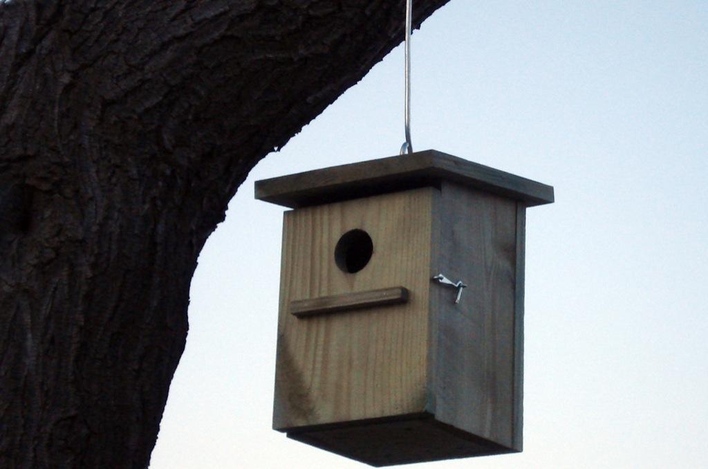caja-nido-1