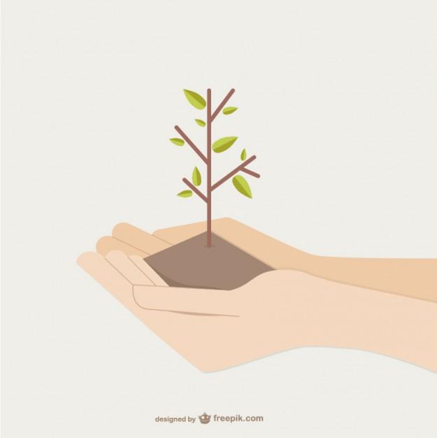 manos-que-sostienen-el-crecimiento-del-arbol_23-2147501730